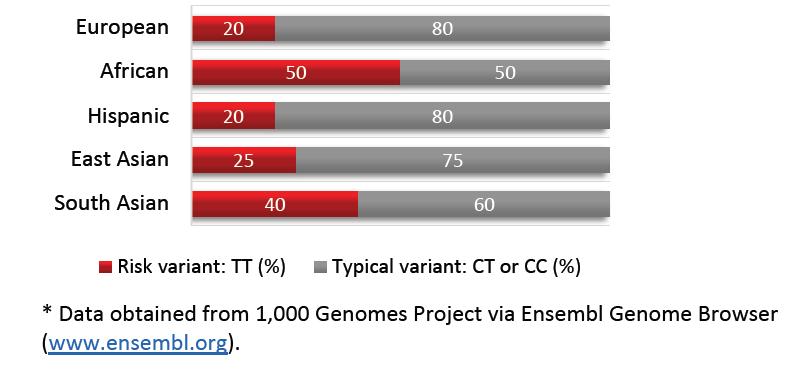 SNP en gen ADORA2A (rs5751876)