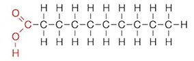 Estructura química de un ácido gaso
