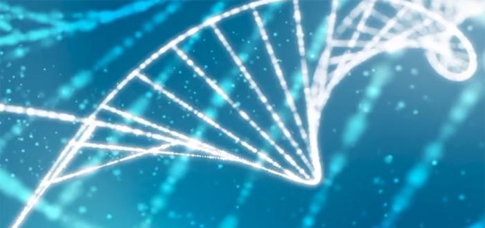 DNA y Alimentos