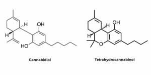 Estructura química de fitocannabinoides