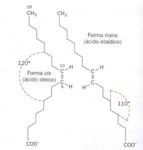 Los ácidos grasos isométricamente pueden tener posición espacial cis o trans.