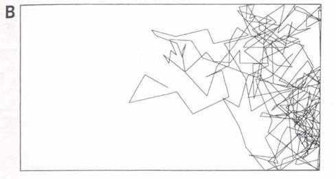 Grafico B: Trayectoria del robot con la presencia del pollito actuando en calidad de observador, el recorrido del robot se ha desplazado hacia donde él se encuentra ubicado.