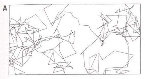 Grafico A: Trayectoria seguida por el robot, sin presencia de pollitos, se nota una distribución aleatoria, que incluye recorrido por todas las zonas del campo.
