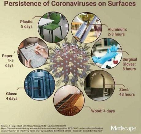 Persistencia de coronavirus