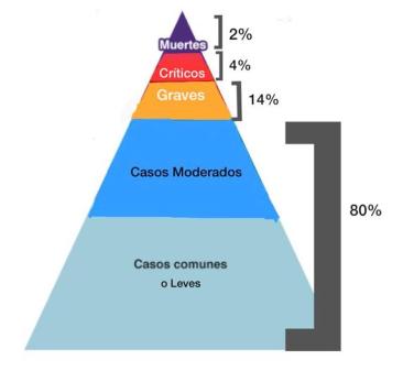Pirámide comportamiento Covid-19
