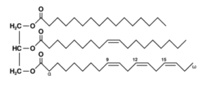 Estructura química de los triglicéridos